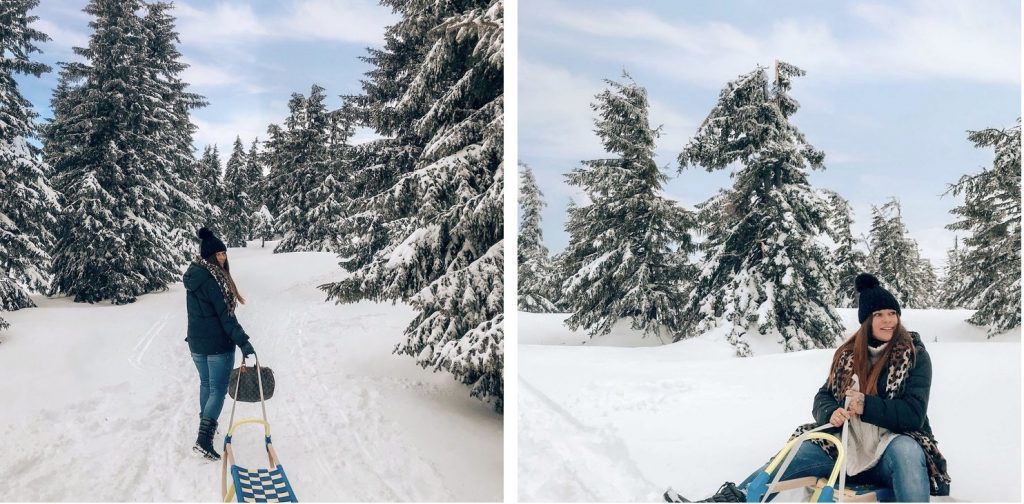 winter-tsjechie