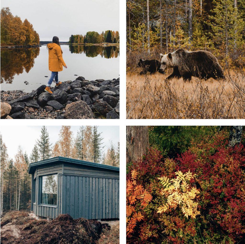 roadtrip-oost-finland