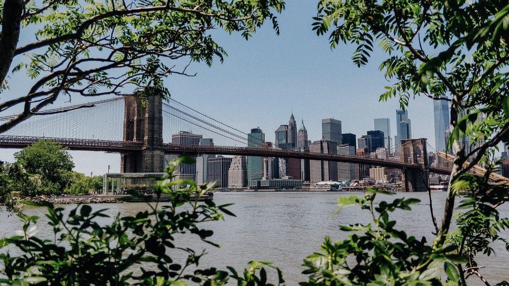 doen-in-new-york