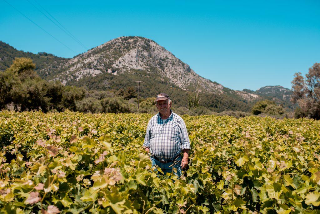 wijngaarden-samos